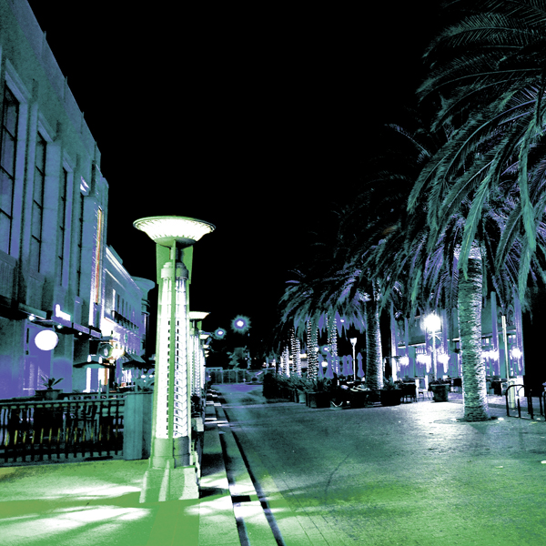 The shimmering streets of Redwood city, lined with symmetrical palm trees